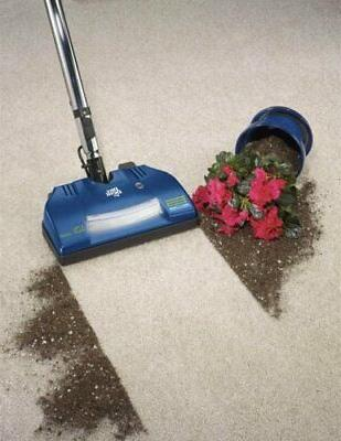 Dirt Vision Nozzle Canister Vacuum